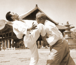 Taekkyon: The Original Martial Art of Korea