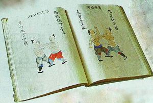 The Bubishi contains anatomical diagrams, philosophical essays, defensive tactical strategies, and poetry.