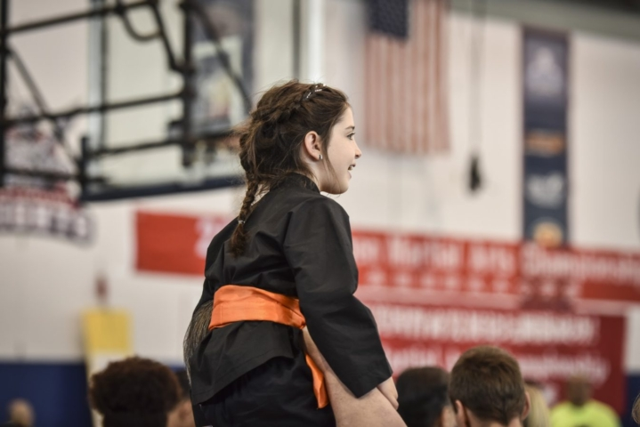 Competition 2015 photos at the US Open Martial Arts Championship organized by the WFMAF.