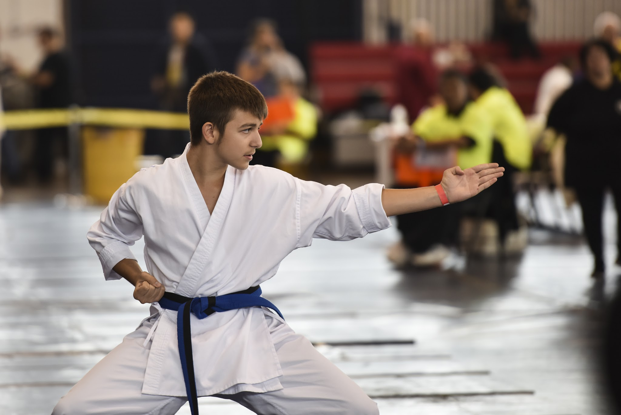 Karate demonstration at the US Open Martial Arts Championship, organized by the WFMAF.