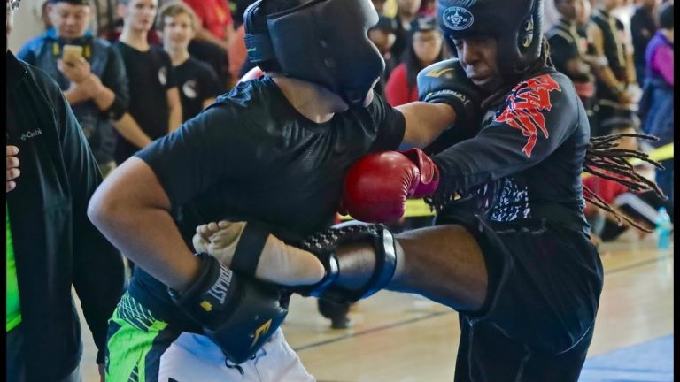 Advanced Level Sparring Part 1 2016 at US Open Martial Arts Championship