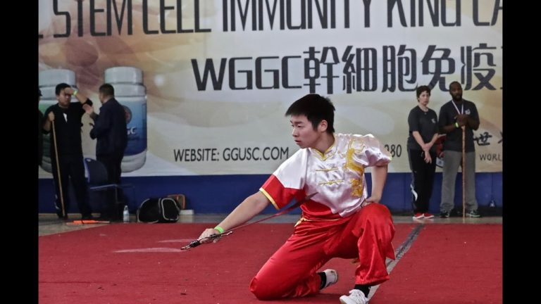 Wushu Competition 2016 at US Open Martial Arts Championship